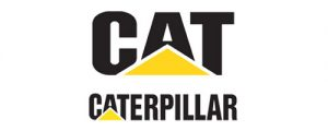 web-caterpillar-rologia-haritidis